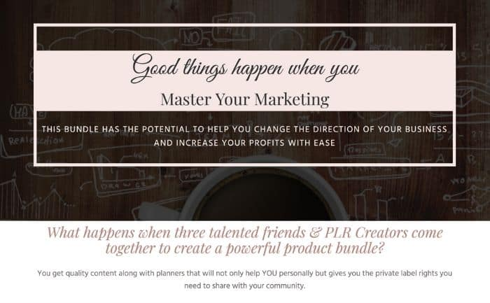 master your marketing bundle